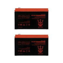 Neptune Power 12V 7AH BATTERY FOR RAZOR E200 & E300S ELECTR