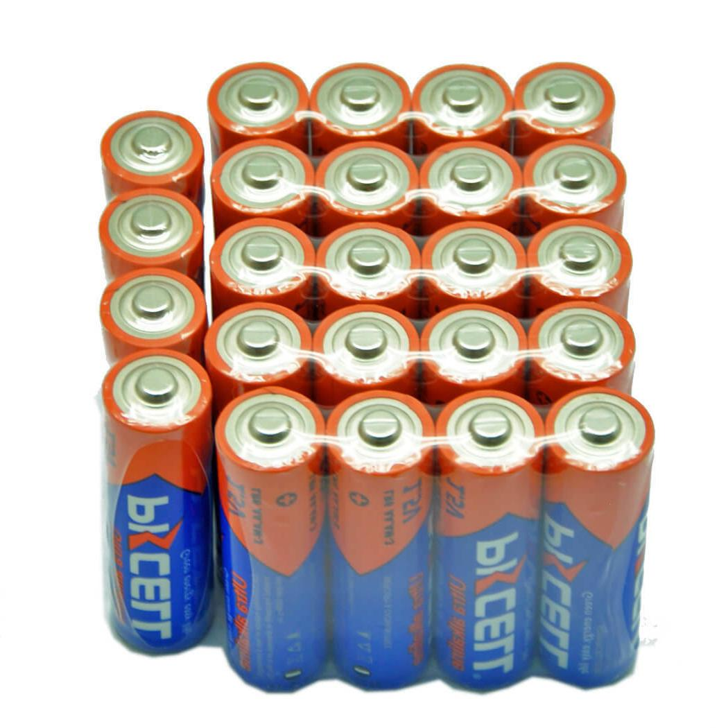 50 Alkaline Batteries